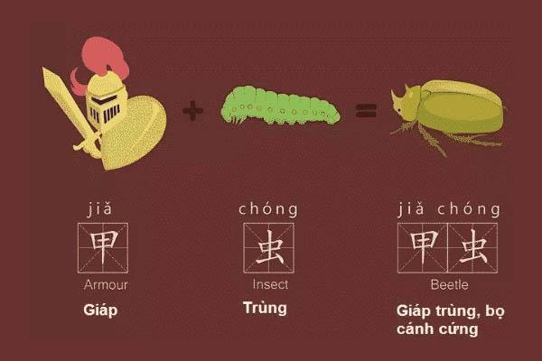 Lợi ích của việc học tiếng Trung bằng hình ảnh